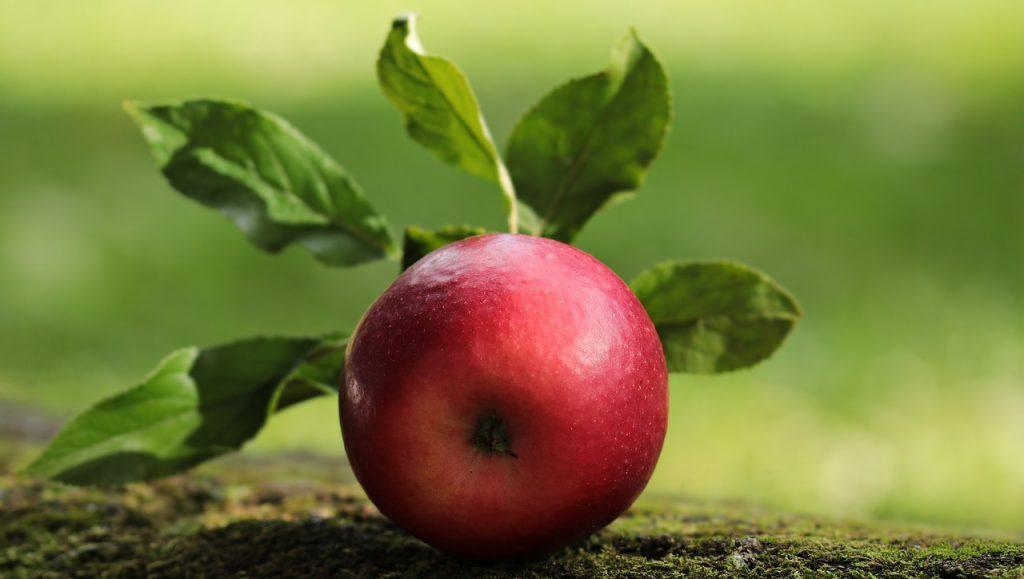 Zdrowa żywność szansą na dłuższe życie